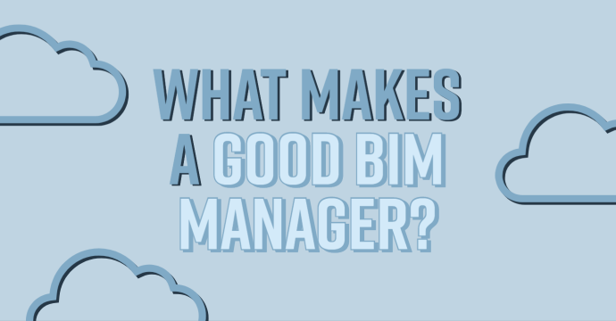 What Makes a Good BIM Manager?