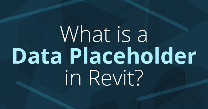 What is a Data Placeholder in Revit?